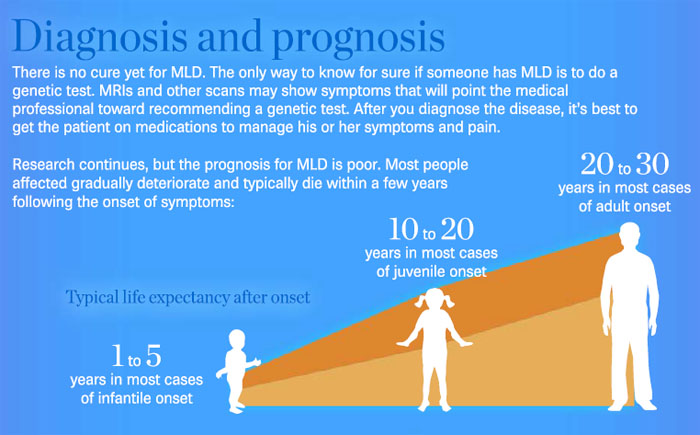 mld_infographic_05